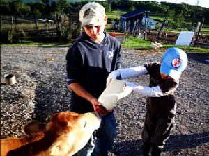 全日制小学部1~3年「ファームステイ」子牛に授乳