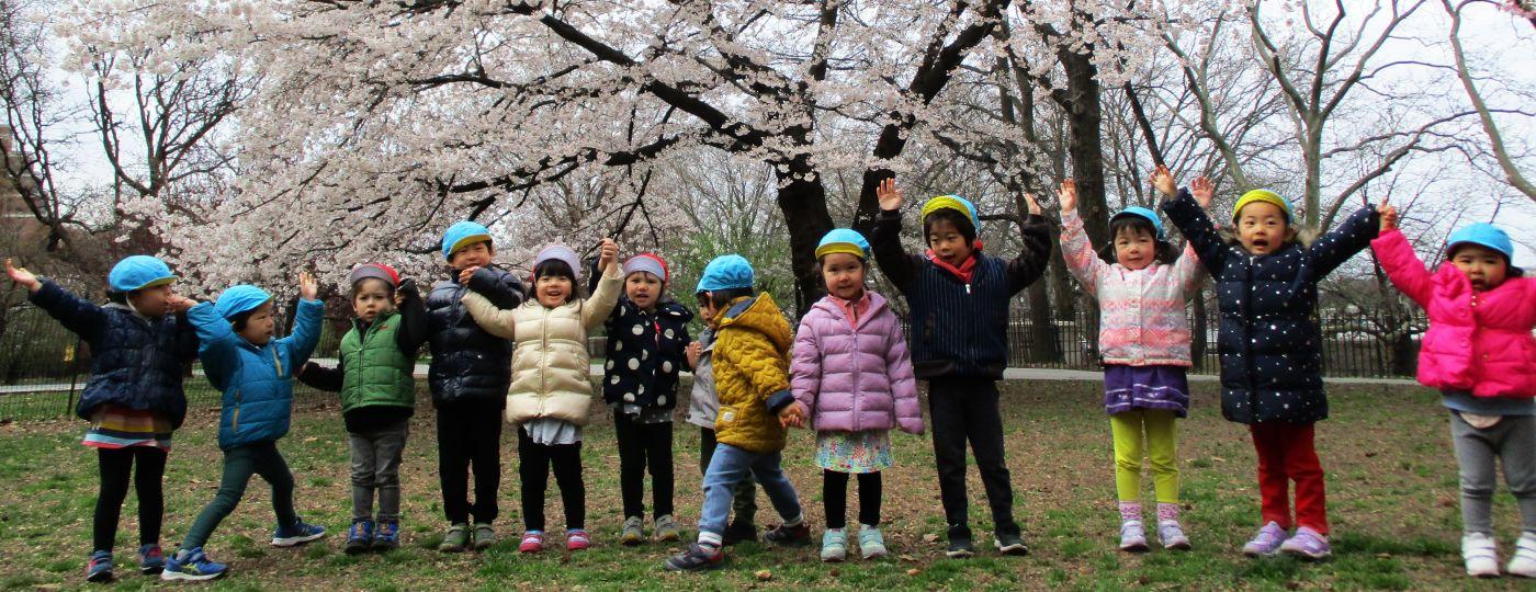 たんぽぽ幼稚園について