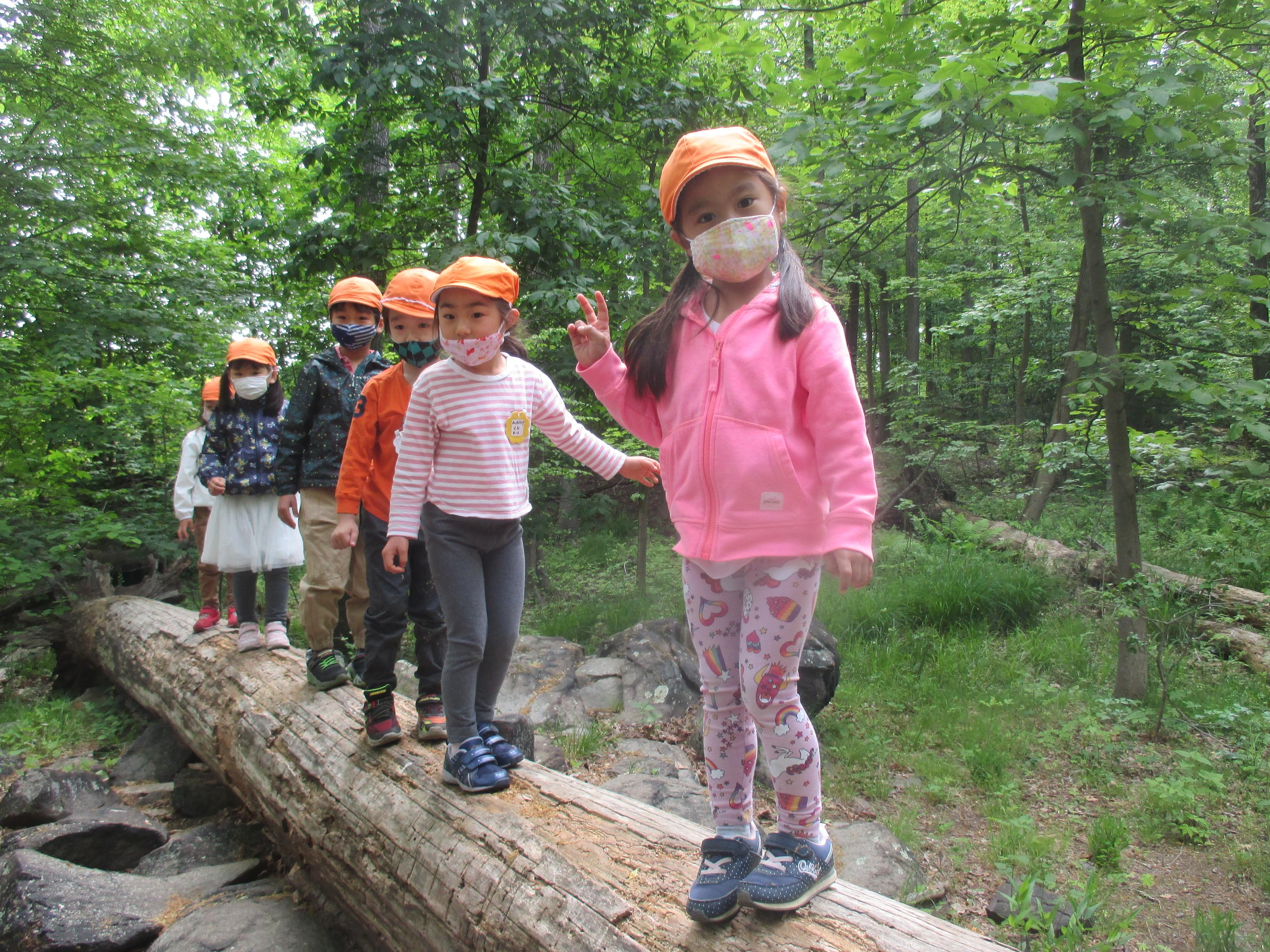 森の幼稚園でたくさんの自然を感じました